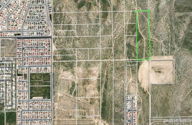 1 Lode Star Road, Rosamond, CA 93560 (#SR19196966) :: Millman Team