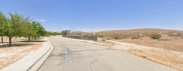 1 United Street, Rosamond, CA 93560 (#SR19196996) :: The Laffins Real Estate Team