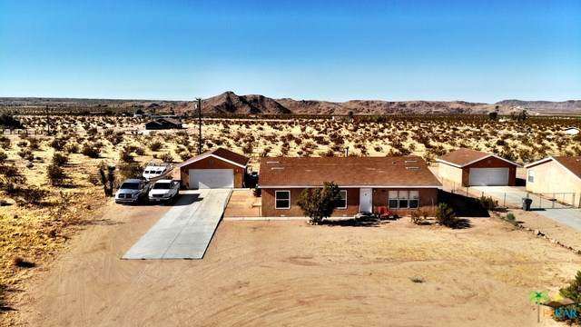 63448 Walpi Drive, Joshua Tree, CA 92252 (#19499606PS) :: Allison James Estates and Homes