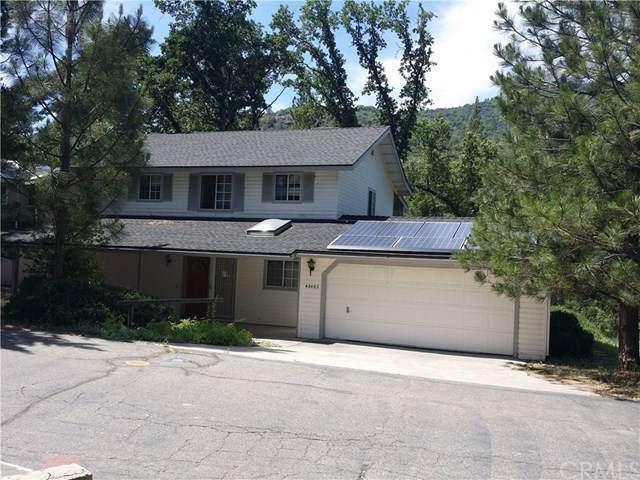 48462 Woodbend Lane, Oakhurst, CA 93644 (#FR19164208) :: Z Team OC Real Estate