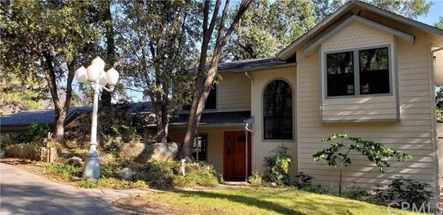 59889 Hillcrest Road, North Fork, CA 93643 (#FR19197289) :: Fred Sed Group