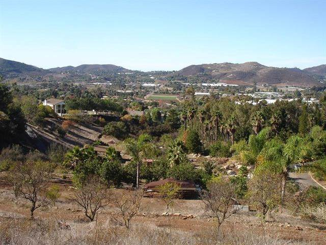 872 Flynn Heights, San Marcos, CA 92069 (#190045957) :: Faye Bashar & Associates