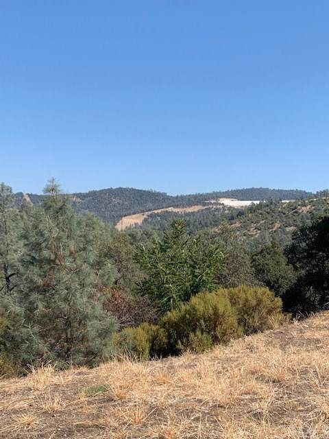 0 Beverly Drive, Oroville, CA 95966 (#OR19190331) :: Keller Williams Realty, LA Harbor