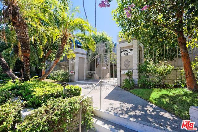 5345 White Oak Avenue E, Encino, CA 91316 (#19500320) :: A|G Amaya Group Real Estate