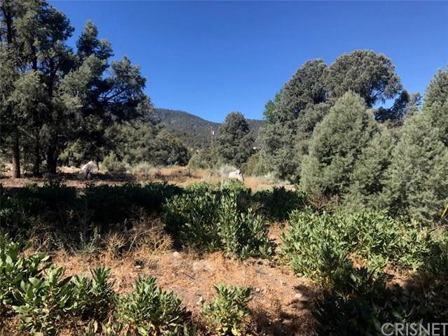 2041 Woodland Dr., Pine Mountain Club, CA 93222 (#SR19197430) :: Z Team OC Real Estate