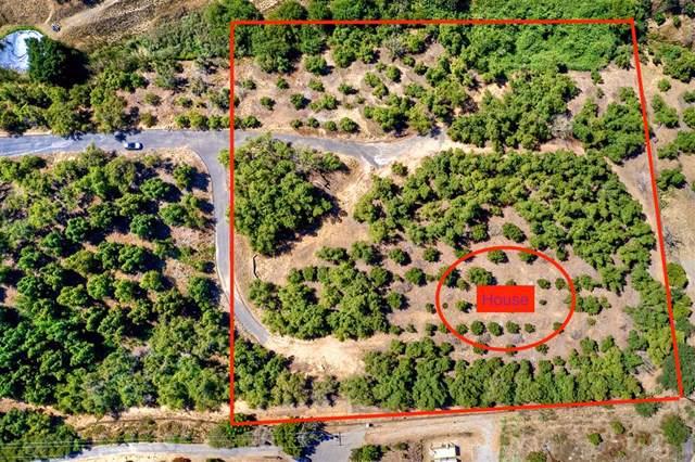 0 Canonita, Fallbrook, CA 92028 (#190046000) :: The Costantino Group | Cal American Homes and Realty