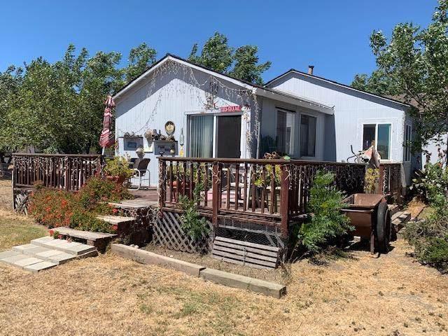 2971 Buena Vista Road, Hollister, CA 95023 (#ML81765033) :: RE/MAX Masters