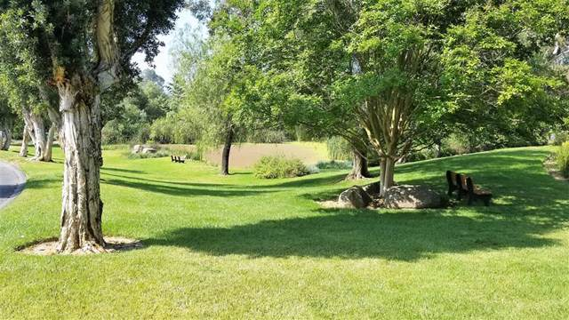 Lake Ridge Rd, Fallbrook, CA 92028 (#190046050) :: Rogers Realty Group/Berkshire Hathaway HomeServices California Properties