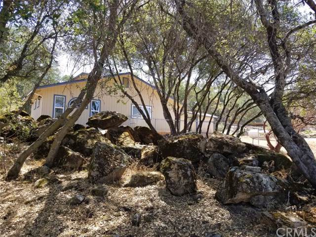 47300 Miwoc Avenue, Coarsegold, CA 93614 (#FR19198210) :: The Costantino Group | Cal American Homes and Realty
