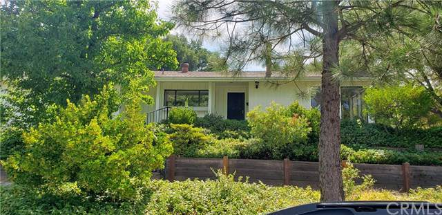 40731 Goldside Drive, Oakhurst, CA 93644 (#FR19198253) :: The Costantino Group | Cal American Homes and Realty
