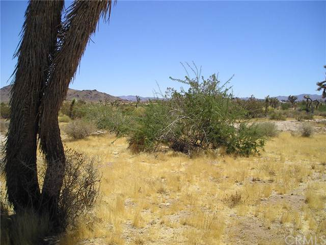 0 Julcrest Road, Yucca Valley, CA 92284 (#JT19198371) :: RE/MAX Empire Properties