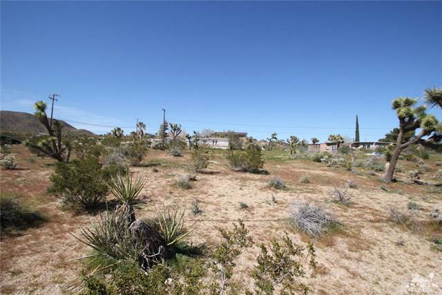 Joshua Drive, Yucca Valley, CA 92284 (#219022189DA) :: Powerhouse Real Estate