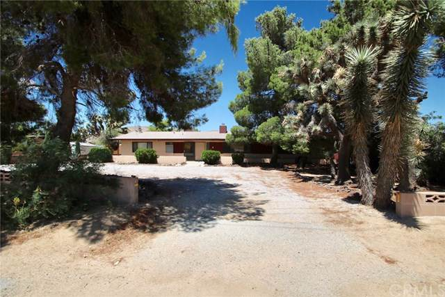 56440 Onaga, Yucca Valley, CA 92284 (#JT19197975) :: Allison James Estates and Homes