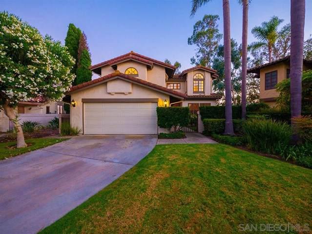 5205 Caminito Providencia, Rancho Santa Fe, CA 92067 (#190046224) :: Rogers Realty Group/Berkshire Hathaway HomeServices California Properties