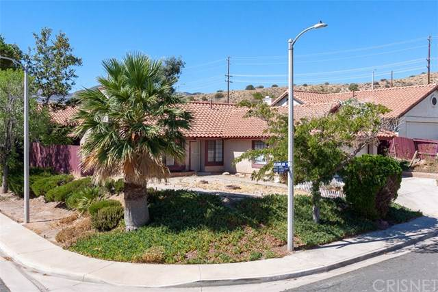 516 White Cloud Terrace, Palmdale, CA 93551 (#SR19198733) :: The Marelly Group | Compass