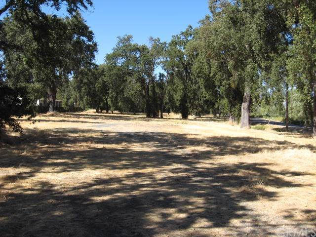 2200 Lakeshore Boulevard, Lakeport, CA 95453 (#LC19198735) :: Twiss Realty
