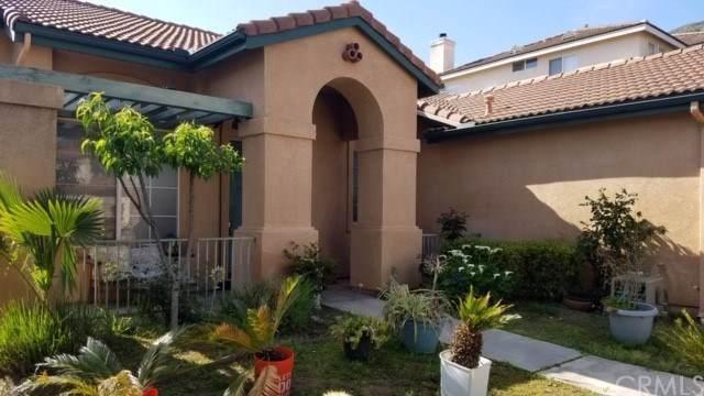 33410 Walham Place, Lake Elsinore, CA 92530 (#SW19199070) :: Allison James Estates and Homes
