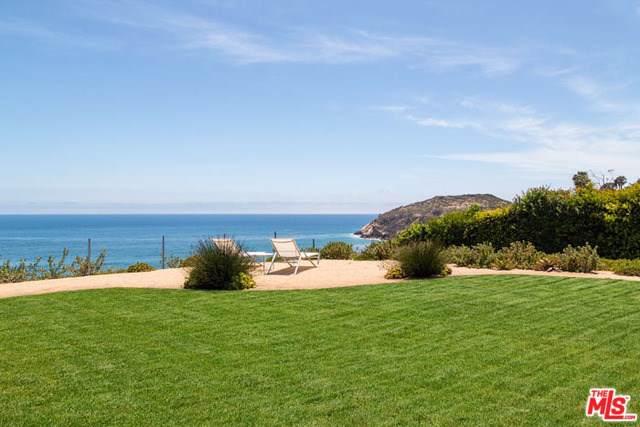 29046 Cliffside Drive, Malibu, CA 90265 (#19501086) :: Allison James Estates and Homes