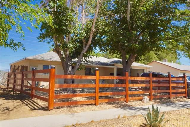 257 Pictorial Street, Palmdale, CA 93550 (#SR19199565) :: Faye Bashar & Associates