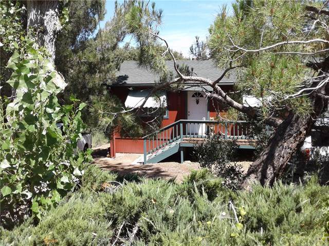2008 Pioneer Way, Pine Mountain Club, CA 93222 (#SR19197834) :: Faye Bashar & Associates