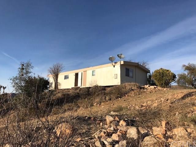 24675 Oak Circle Drive, Wildomar, CA 92595 (#SW19199938) :: Allison James Estates and Homes