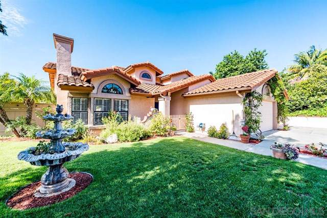 1302 Blue Heron Ave, Encinitas, CA 92024 (#190046320) :: Rogers Realty Group/Berkshire Hathaway HomeServices California Properties