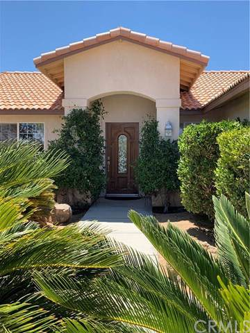 61565 Calle Del Rio, Joshua Tree, CA 92252 (#JT19200099) :: The Laffins Real Estate Team