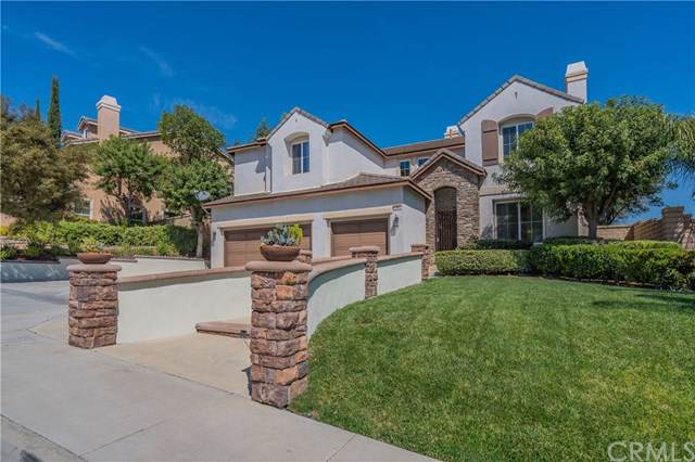 47 Volta Del Tintori Street, Lake Elsinore, CA 92532 (#CV19200169) :: Heller The Home Seller