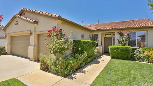 487 Langer Court, Hemet, CA 92545 (#SW19200151) :: Heller The Home Seller