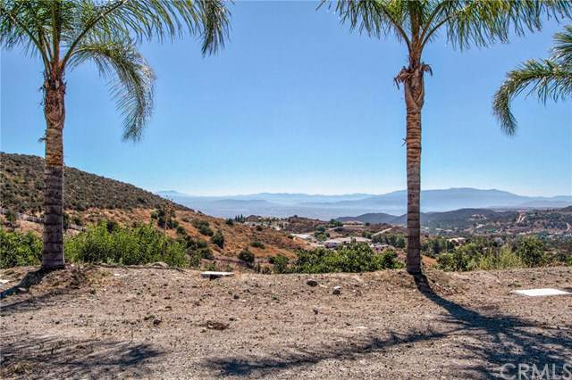 20150 Avenida De Arboles, Murrieta, CA  (#SW19197506) :: Allison James Estates and Homes