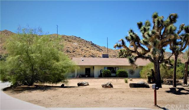 56599 Kismet Road, Yucca Valley, CA 92284 (#JT19199282) :: Legacy 15 Real Estate Brokers