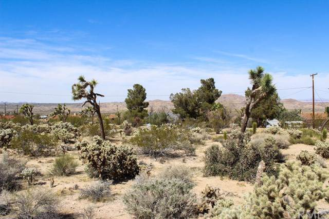 60622 Latham, Joshua Tree, CA 92252 (#JT19200346) :: Provident Real Estate