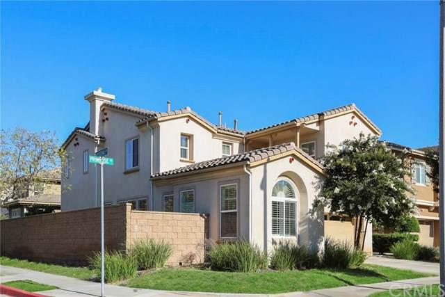 520 S Primrose Street, La Habra, CA 90631 (#WS19199387) :: eXp Realty of California Inc.