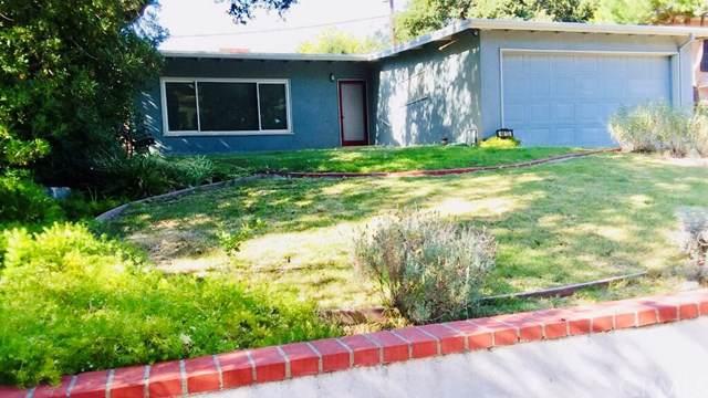 6613 Haywood Street, Tujunga, CA 91042 (#TR19201144) :: The Brad Korb Real Estate Group