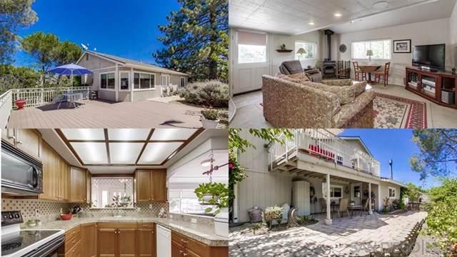 1440 Viejas View Ln, Alpine, CA 91901 (#190046741) :: The Laffins Real Estate Team