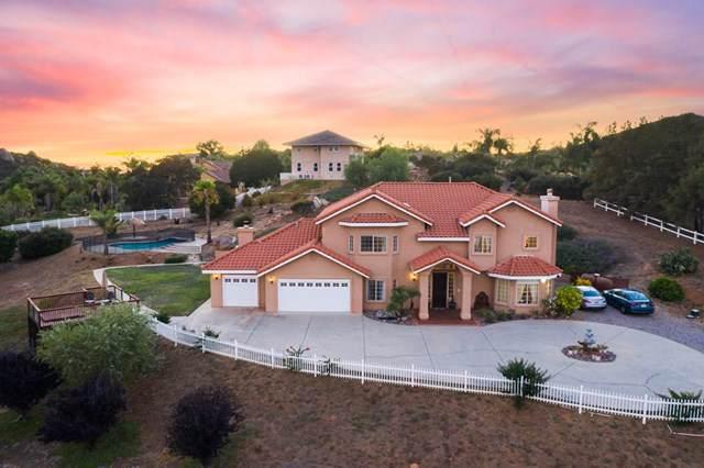 2852 Conestoga Ct, Alpine, CA 91901 (#190046729) :: The Laffins Real Estate Team