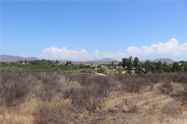 1 Anza Road, Temecula, CA 92591 (#OC19200490) :: Allison James Estates and Homes