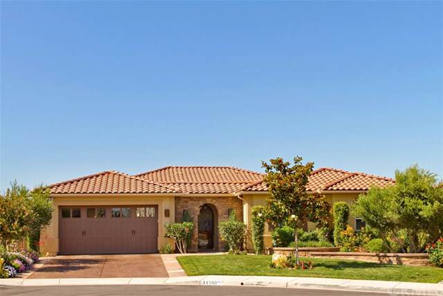 34593 Serdonis Street, Temecula, CA 92592 (#SW19201001) :: Allison James Estates and Homes