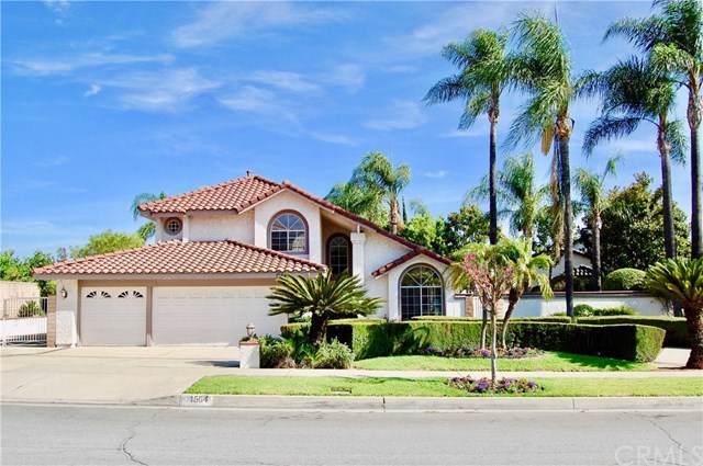 1564 Resort Street, Upland, CA 91784 (#CV19188120) :: Rogers Realty Group/Berkshire Hathaway HomeServices California Properties