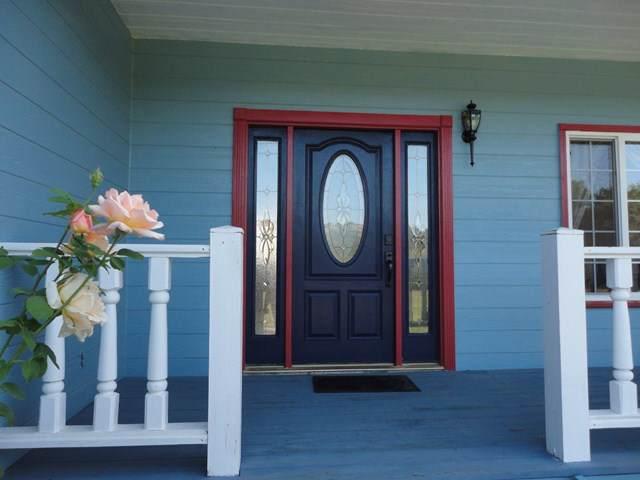 3005 Cienega Road, Hollister, CA 95023 (#ML81765743) :: Rogers Realty Group/Berkshire Hathaway HomeServices California Properties