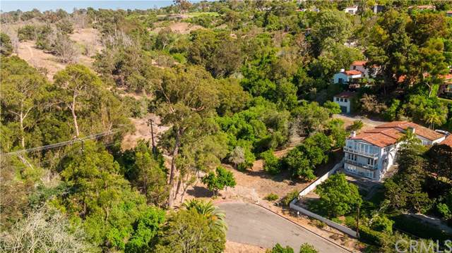 2624 Via Tejon, Palos Verdes Estates, CA  (#PV19202061) :: Realty ONE Group Empire