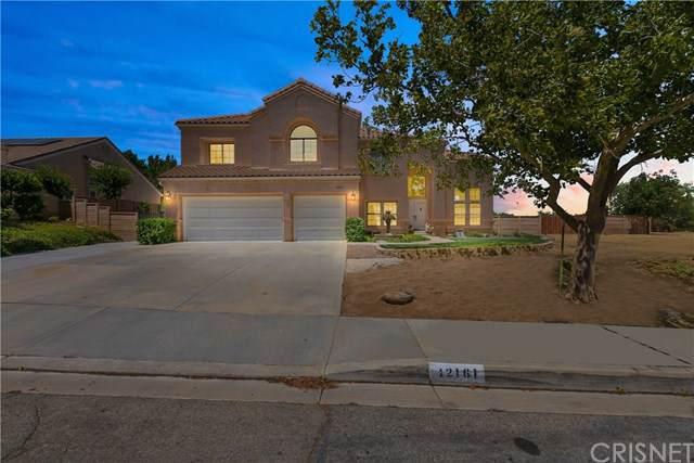 42161 Parkmont Drive, Quartz Hill, CA 93536 (#SR19202073) :: Fred Sed Group