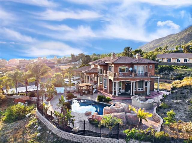 14780 Ur Ln., Jamul, CA 91935 (#190047028) :: Steele Canyon Realty