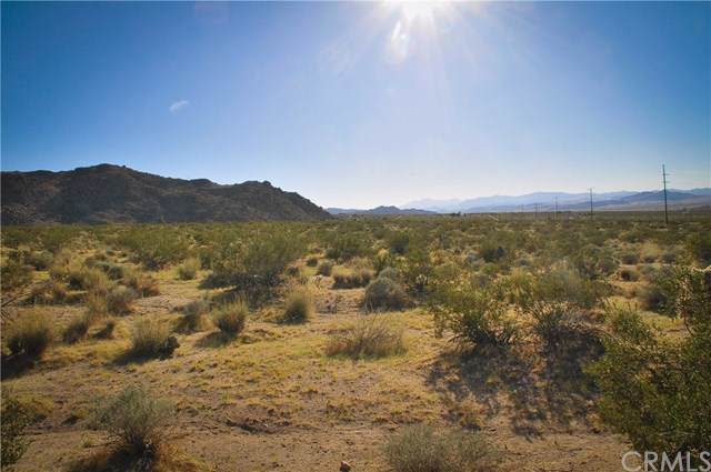 22 Hendys Rd, 29 Palms, CA  (#JT19202372) :: Sperry Residential Group