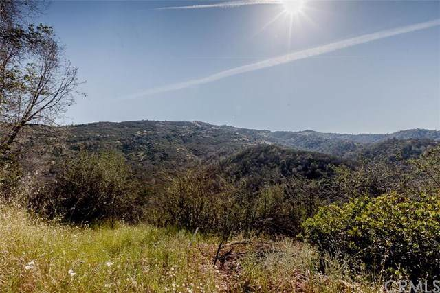 4830 Hwy 49 S, Mariposa, CA 95338 (#MP19202431) :: Allison James Estates and Homes