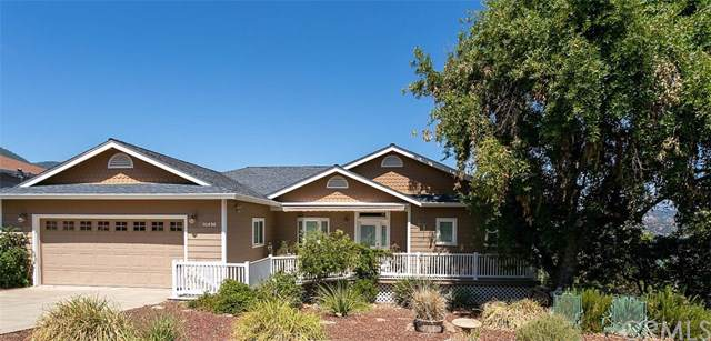10496 Edgewater Drive, Kelseyville, CA 95451 (#LC19202661) :: The Laffins Real Estate Team