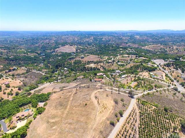 0 Dos Ninos Road, Fallbrook, CA 92028 (#OC19202835) :: Rogers Realty Group/Berkshire Hathaway HomeServices California Properties