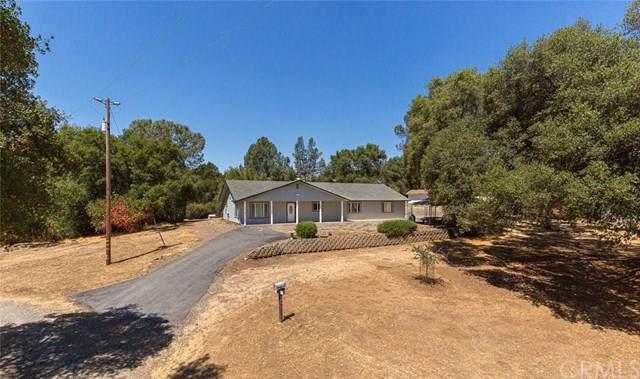 4591 Ben Hur Road, Mariposa, CA 95338 (#MC19202284) :: Allison James Estates and Homes