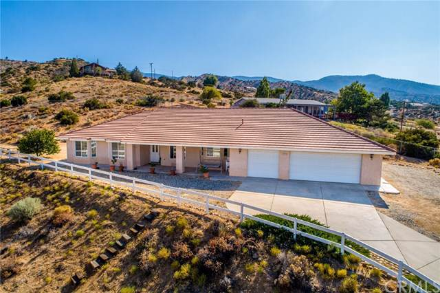 3281 Snow Line Drive, Pinon Hills, CA 92372 (#IV19202982) :: Fred Sed Group