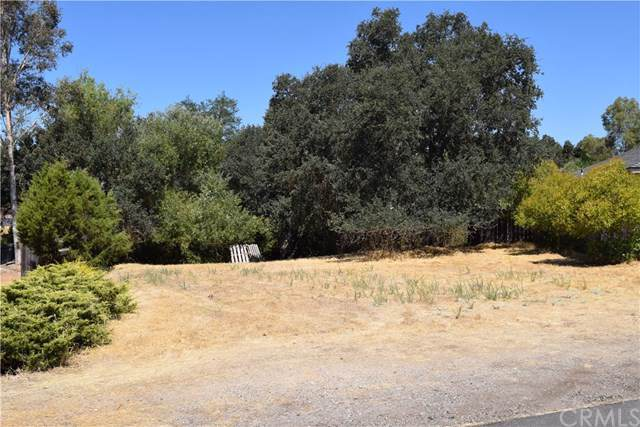 4929 Pretty Doe Lane, Paso Robles, CA 93446 (#NS19203024) :: The Marelly Group | Compass